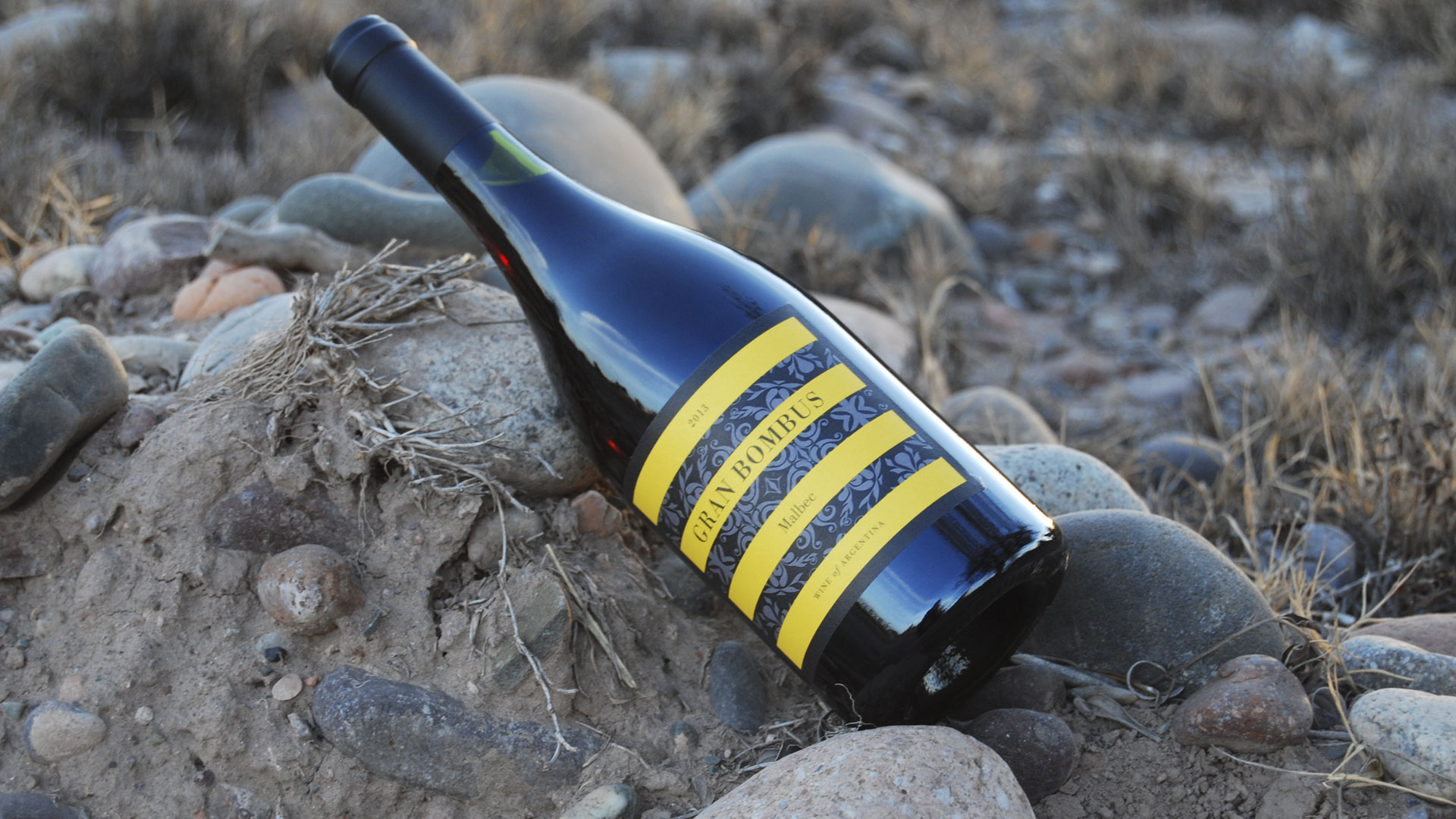 Abejorro Wines, nectar de la vid!